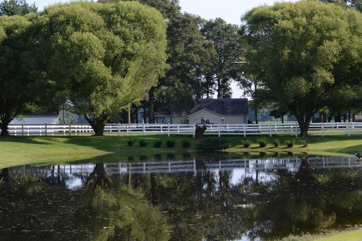 Pet Friendly Bridgeville Airbnb Rentals