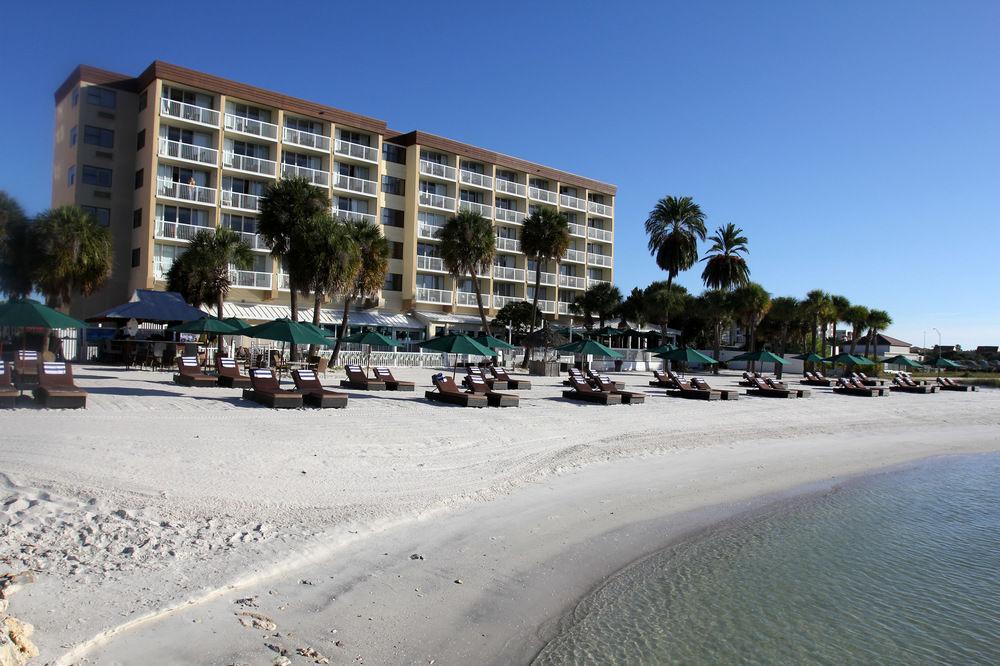 dreamview beachfront hotel resort pet policy. Black Bedroom Furniture Sets. Home Design Ideas
