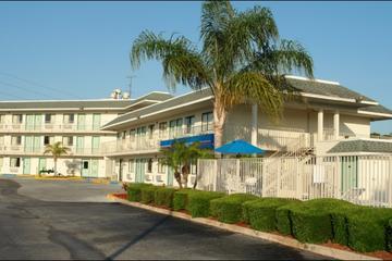Pet Friendly Motel 6 Lakeland