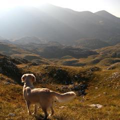 Beautiful Mountain in Bosnia
