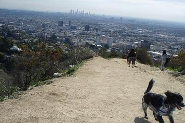 Pet Friendly Runyon Canyon Park