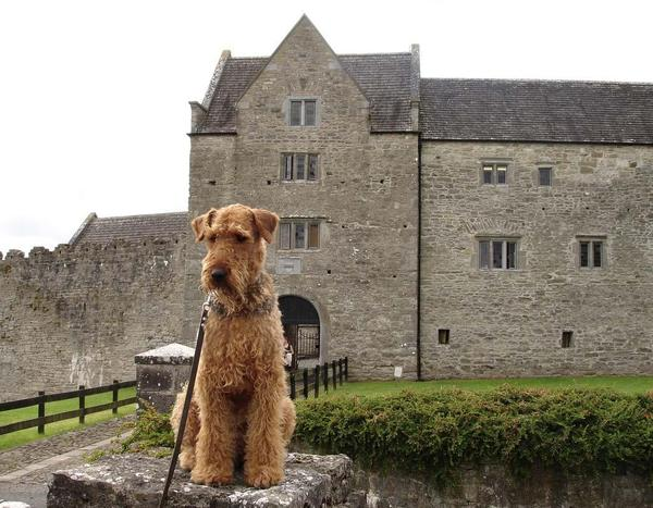 Grange Castle