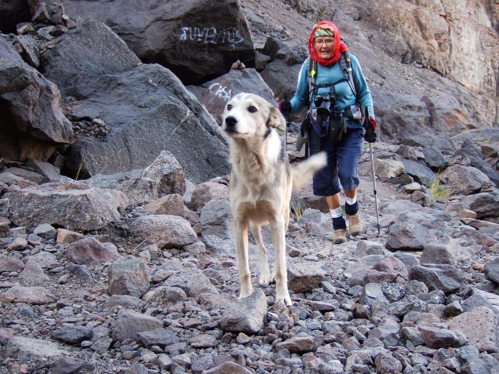 Trakking in the High Atlas