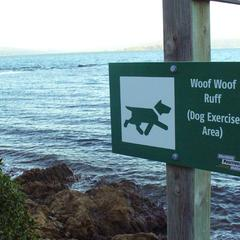 Dog Exercise Area