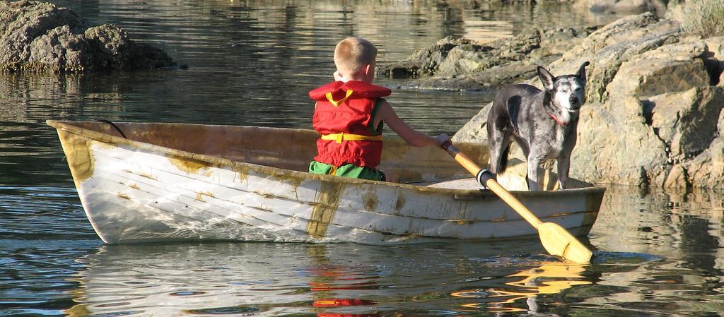 Dog Friendly Canada - Bring Fido