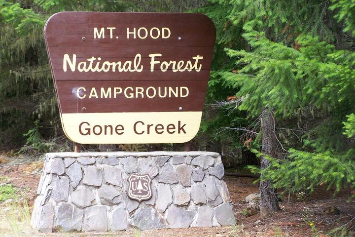 Pet Friendly Gone Creek Campground