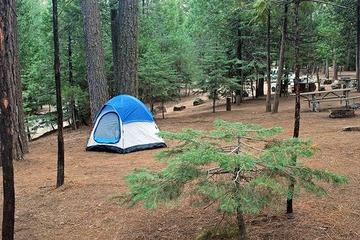 Pet Friendly Hodgdon Meadow Campground
