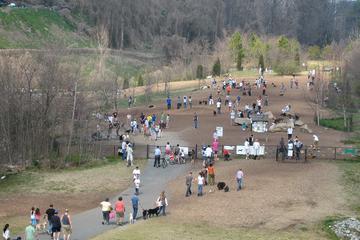 Pet Friendly Piedmont Dog Park
