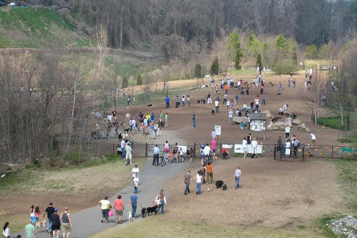 Pet Friendly Piedmont Park Dog Park
