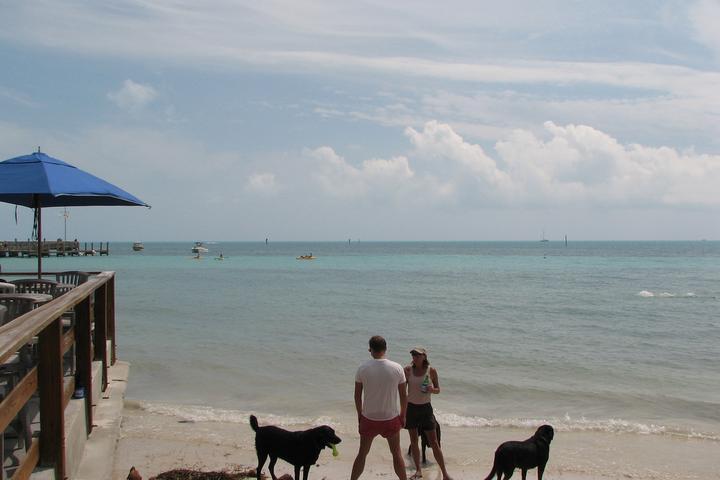Pet Friendly Key West Dog Beach