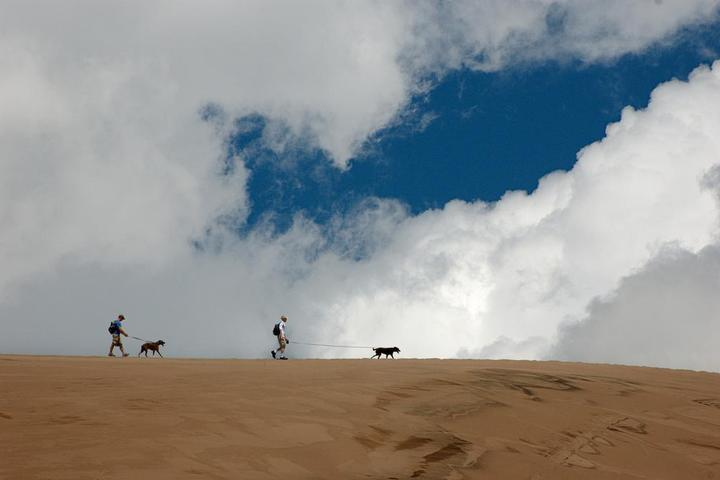 Pet Friendly Great Sand Dunes National Park