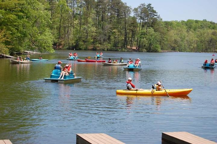 Dog Friendly Activities in Greenville, SC - Bring Fido
