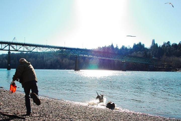 Pet Friendly Sellwood Riverfront Park