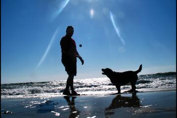 Pet Friendly Myrtle Beach State Park