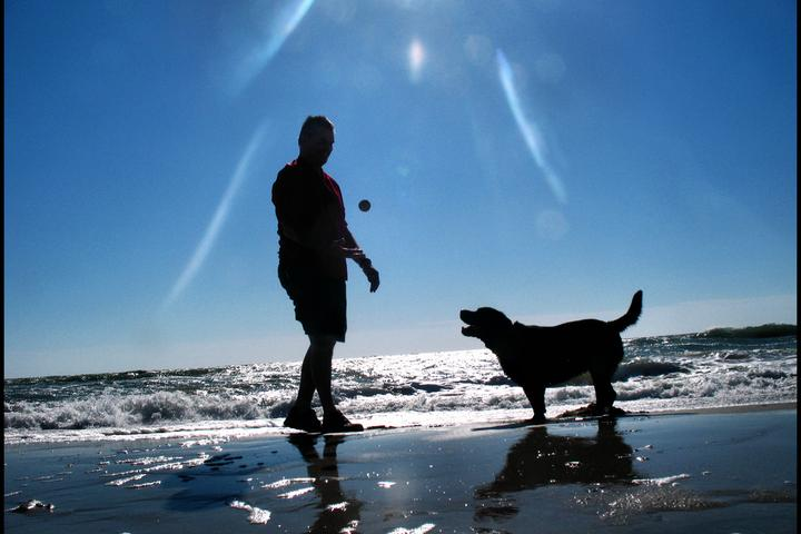 Pet Friendly Myrtle Beach State Park