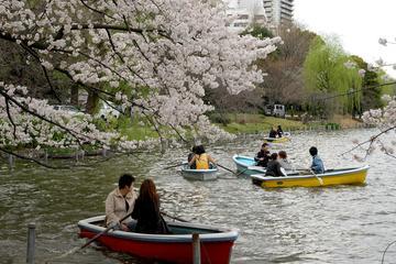 Pet Friendly Ueno Park