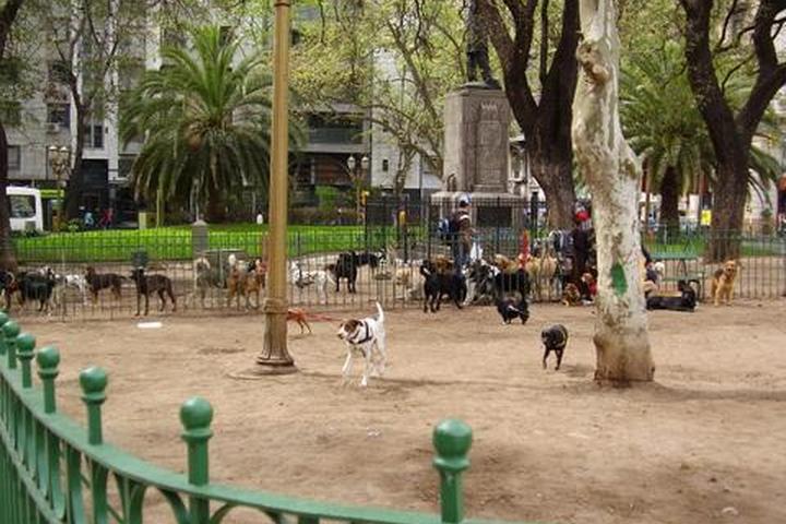 Pet Friendly Avenida de Mayo Dog Park