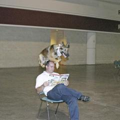 Dog jumps over guy sitting in chair!