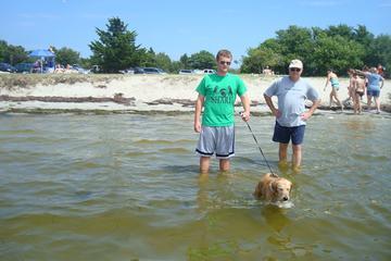 Dog Friendly Beaches In Ocean City Md Bringfido