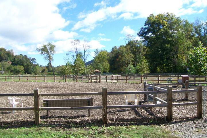 Pet Friendly Azalea Park Dog Park