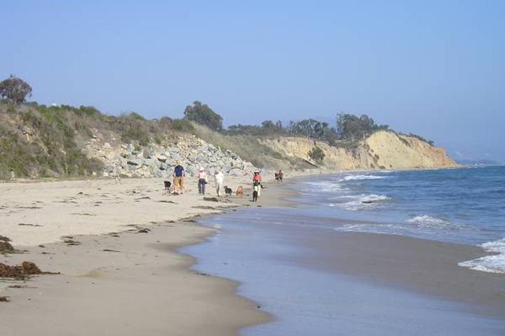Pet Friendly Summerland Beach