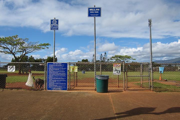 Pet Friendly Mililani Dog Park
