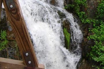 Pet Friendly Hidden Falls Regional Park