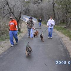 DoD Breeding Program Puppy Hike