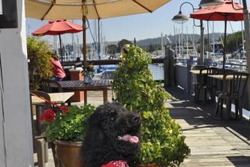 Dog Friendly Restaurants In Monterey Ca Bringfido