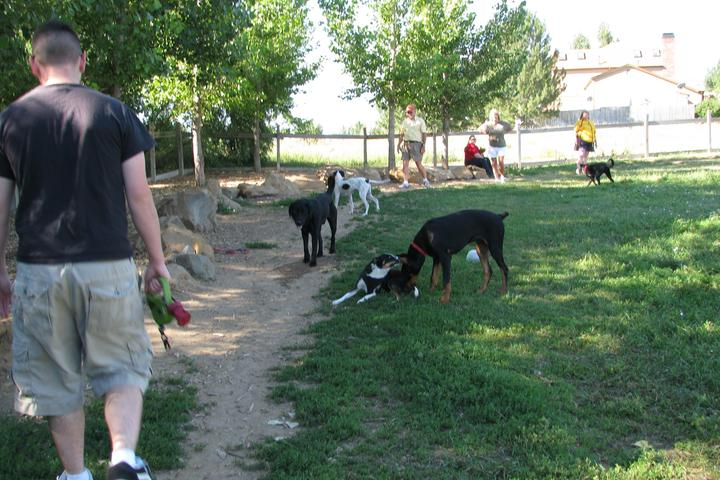 Pet Friendly Grandview Dog Park