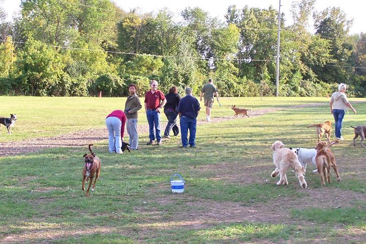 Pet Friendly FIDO (Friends in Dog Ownership) Park
