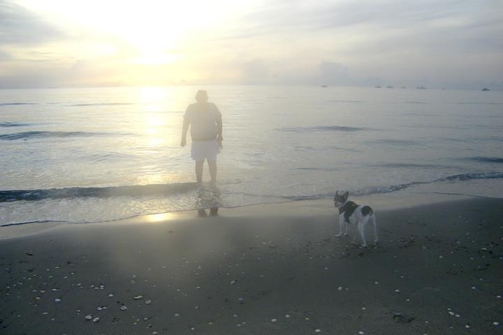 Pet Friendly Jupiter Beach (Off-Leash Beach)