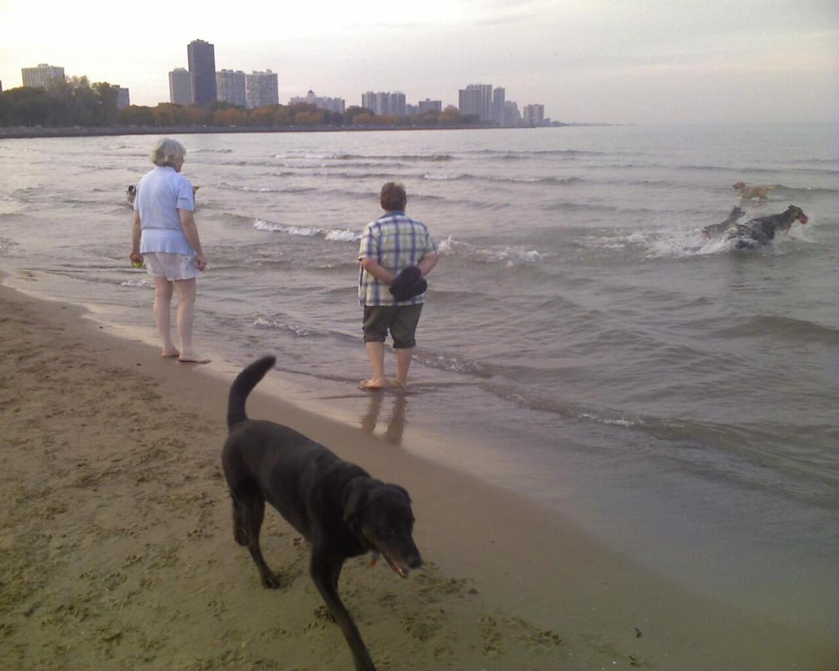 Montrose Beach Sept. 2010