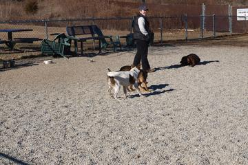 Pet Friendly Pequannock Township Bark Park