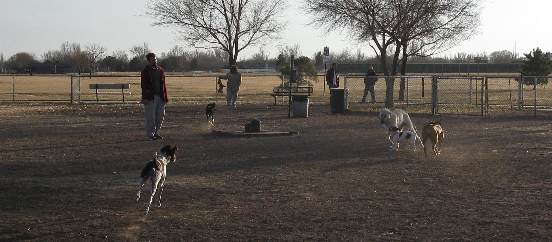 Dog Friendly Amarillo Tx Bringfido
