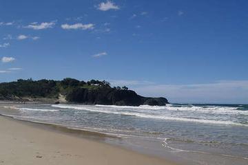 Pet Friendly Fingal Heads Beach