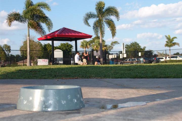 Pet Friendly Gary B Jones Park for People and Pups