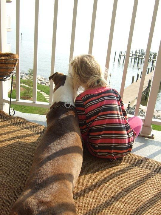 Pet Friendly Hotels Chesapeake Beach Md