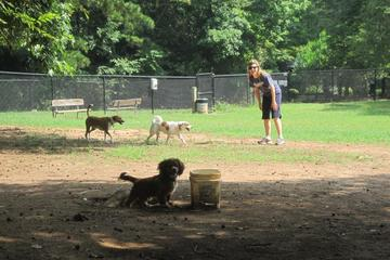 Pet Friendly Barkingham Park at Reedy Creek Park