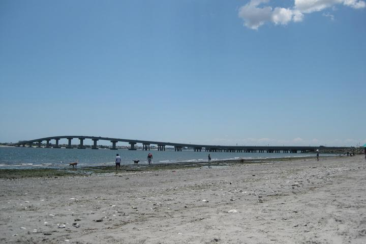 Pet Friendly Longport Dog Beach