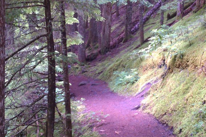 Pet Friendly Ramona Falls Trail