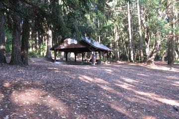 Pet Friendly Point Defiance Park