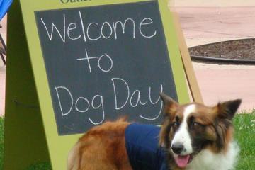 Pet Friendly Settlers' Green Outlet Village