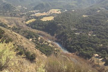 Pet Friendly Aliso Trail