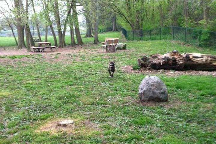 Pet Friendly Schellin Dog Park