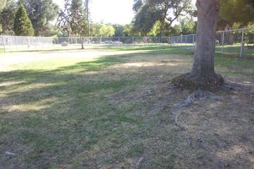 Pet Friendly Roeding Dog Park