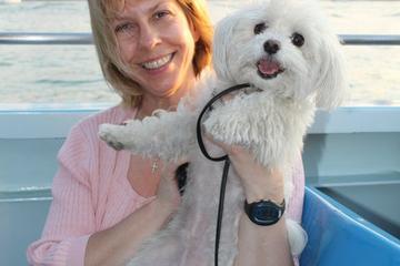 Pet Friendly Mercury's Canine Cruise