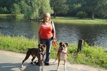 Pet Friendly Hudson Dog Park at Bensons Park