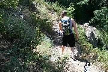 Pet Friendly Beaver Brook Trail