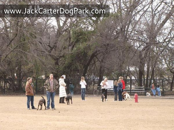 Dog Friendly Parks In Plano